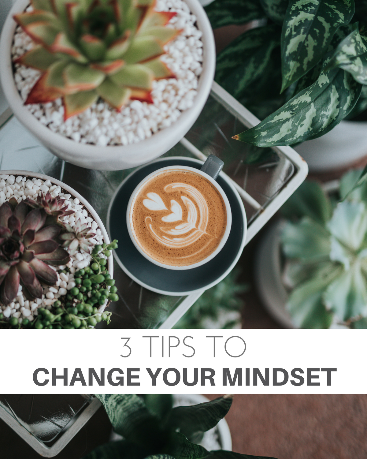3 Tips to Change Your Mindset
